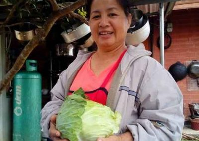 vegetables (2)-s