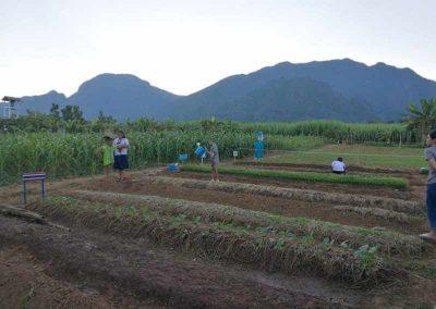 bio-landwirdschaft (10)-s