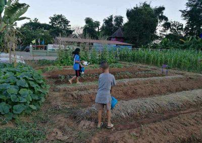 bio-landwirdschaft (9)-s